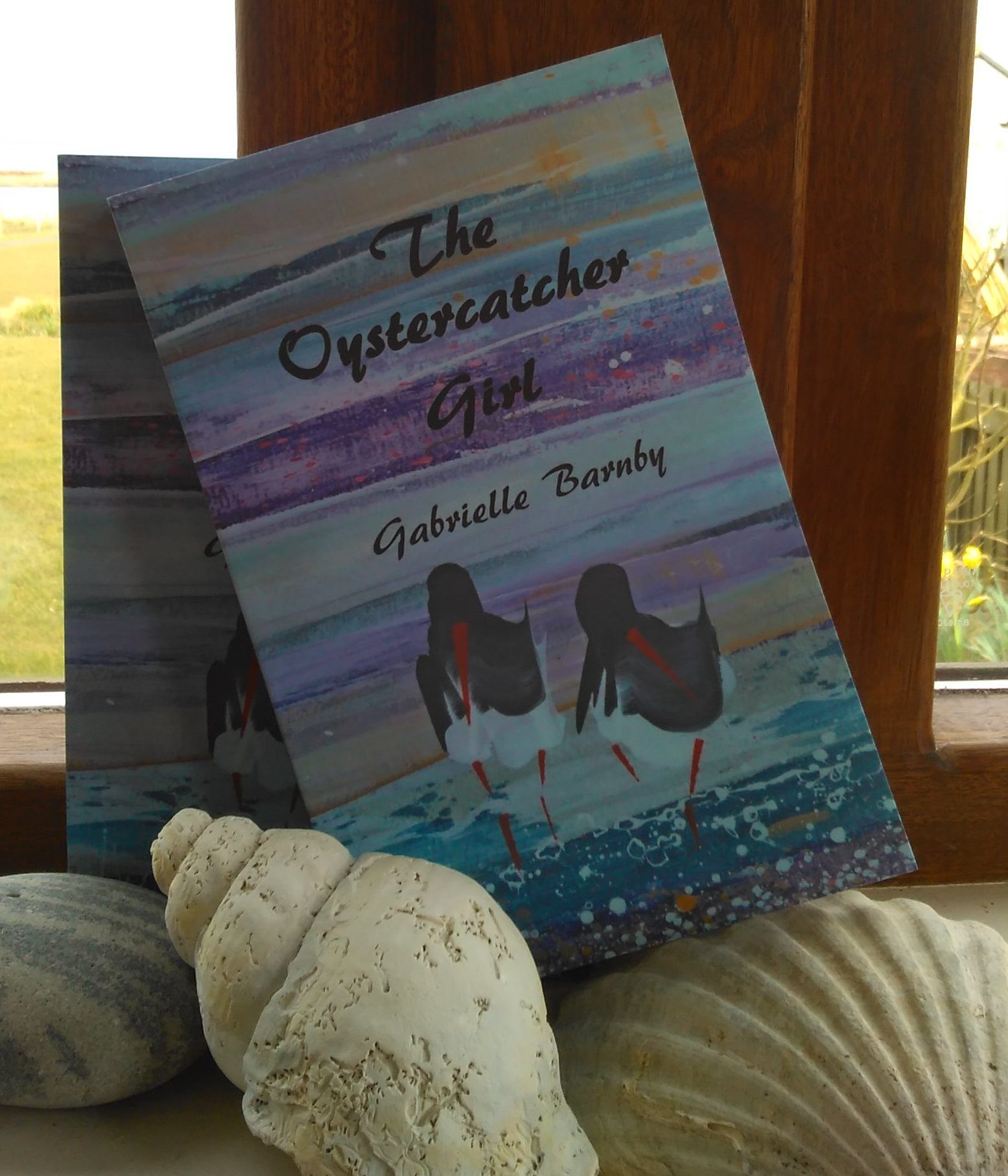 Romance, mystery, Scotland, Islands, Gabrielle Barnby, The Oystercatcher Girl, Orkney, writer, debut, novel, Shirley Whiteside, Booked, Pulse